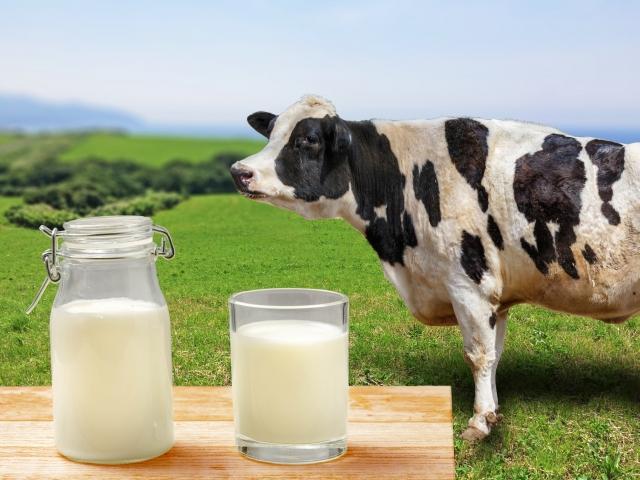 小岩井乳業「ビン牛乳、乳飲料」銭湯で人気の飲み物が3月で終売に!その理由は?